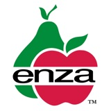 Enza fruit